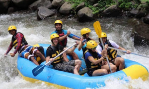 Ayung river rafting with lunch and private hotel transfer