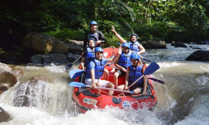 Bali Rafting with pick up and drop